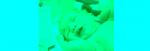 [ทำนายฝัน-ตัวเลข] ฝันว่าคุณได้ส่งเสียงเรียกเด็กทารกที่ตายแล้ว