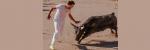 [ทำนายฝัน-ตัวเลข] ฝันว่าถูกวัวกระทิงสีดำวิ่งไล่