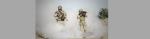 [ทำนายฝัน-ตัวเลข] ฝันว่าเป็นทหาร,ฝันว่าได้เข้าร่วมรบ,ฝันว่าได้เข้ากองทัพ