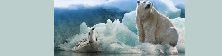 [ทำนายฝัน-ตัวเลข] ฝันว่าได้ไปอยู่ขั้วโลกเหนือ