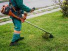 ฝันว่าคุณกำลังตัดหญ้า , ฝันว่าคุณกำลังใช้เครื่องตัดหญ้า