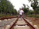 ฝันว่าคุณกำลังเดินไปตามรางรถไฟ , ฝันว่าคุณกำลังเดินไปตามทางรถไฟ