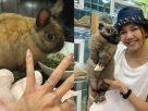 ฝันว่าถูกกระต่ายข่วน , ฝันว่าถูกกระต่ายกัด ,ฝันว่าถูกกระต่ายกัดนิ้วมือ,ฝันว่าถูกกระต่ายกัดนิ้วเท้า